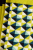 Harlequin-Spring-Yellow